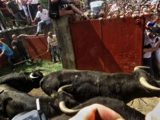 Imagen del concurso fotográfico sanjuanero de Soria Noticias.