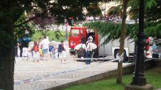 Foto 2 - Los bomberos retiran un enjambre en el entorno de la concatedral de San Pedro