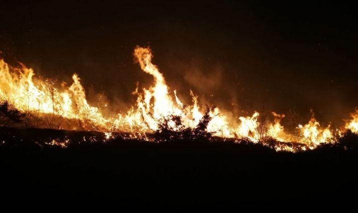 Menos hectáreas quemadas en 2018