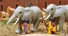 La Batalla de los Elefantes. Tierraquemada.