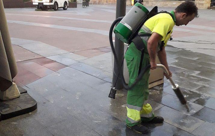 Un operario en labores de limpieza de este residuo. /Ayto.