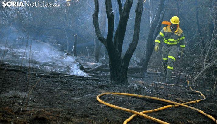 Foto 1 - Fomento y Medio Ambiente declara la alerta de incendios forestales por riesgo meteorológico para el 28 de agosto en toda la Comunidad