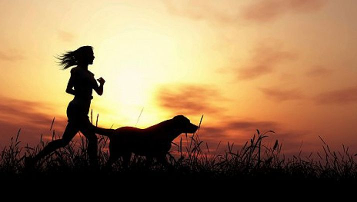 Foto 1 - Piden la revisión de la normativa sobre mascotas