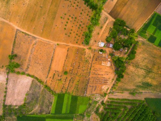 Vista aérea de un terreno agrícola. Imagen de archivo