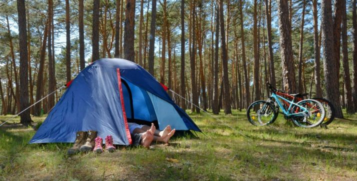 Imagen de un camping de la zona de los Pinares sorianos. /CU