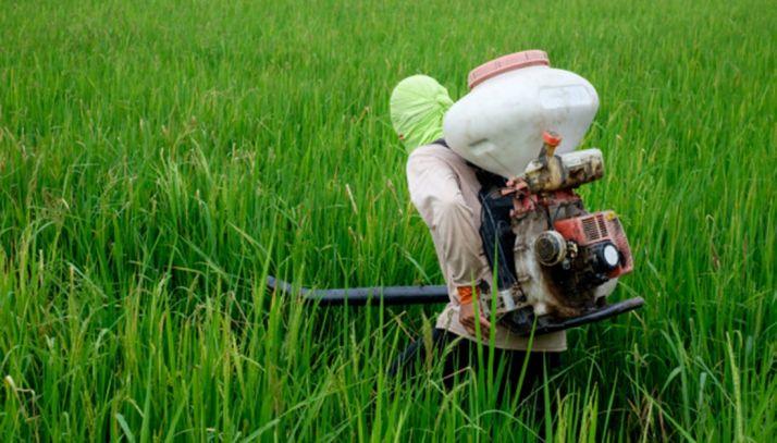 Foto 1 - Asaja aborda la eficacia de la fertilización este jueves