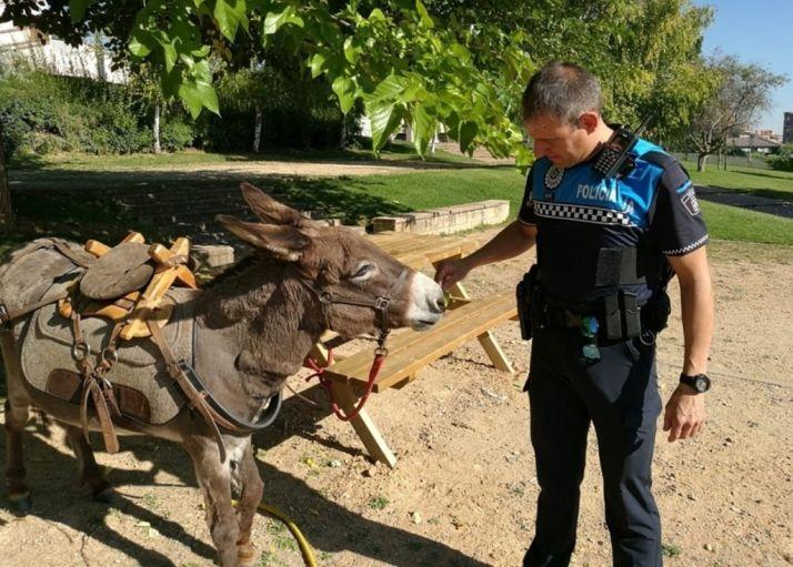 Imagen cedida por Policía de Valladolid.
