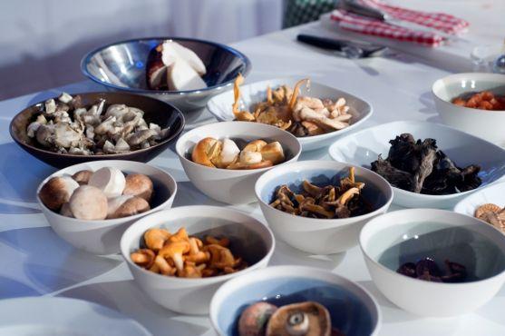 La sexta edición del congreso bianual 'Soria Gastronómica' se transforma en cita multidisciplinar para extraer toda la esencia al reino fungi.