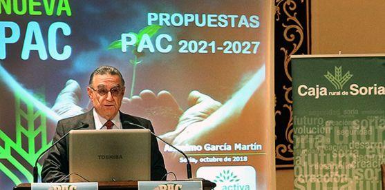 El director de Soriactiva, este jueves en la ponencia. /FSA