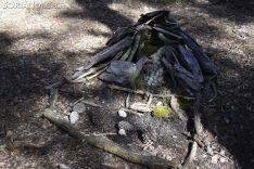 Bosque encantado de San Leonardo de Yagüe. /EM