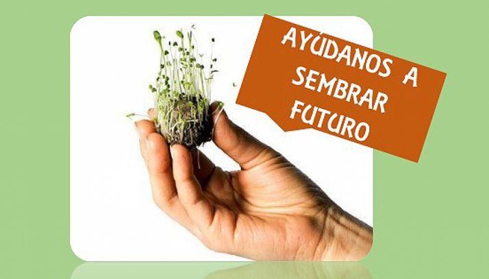 Foto 1 - Asovica-Fadess anima a plantar 'Bomas de Vida' este sábado