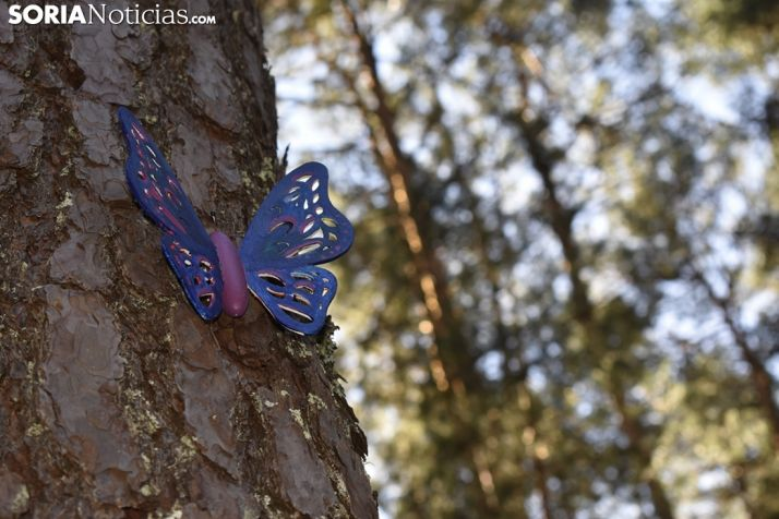 Bosque encantado de San Leonarde de Yagüe. /EM