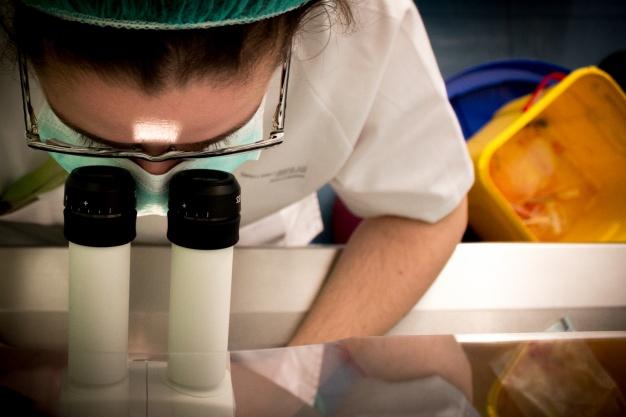 Foto 1 - La Junta pretende reducir la brecha de género en las carreras científicas y tecnológicas