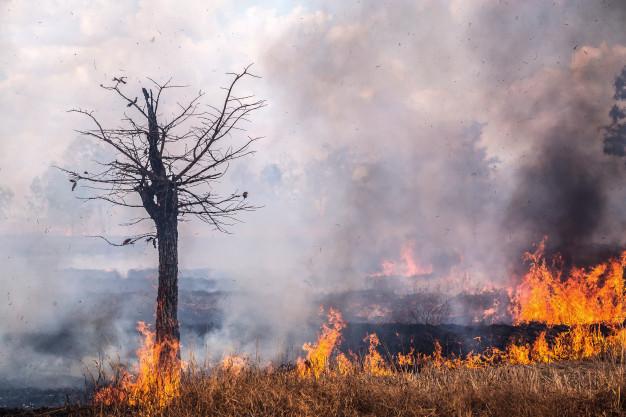 Foto 1 - Grandes incendios en Canadá afectan a la atmósfera de Castilla y León
