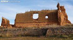 Cigüeñas en el castillo de Serón de Nágima a finales de diciembre. /SN