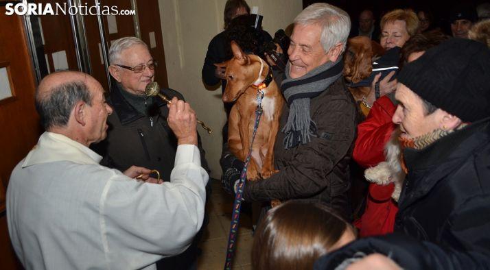 San Antón vuelve para proteger a las mascotas