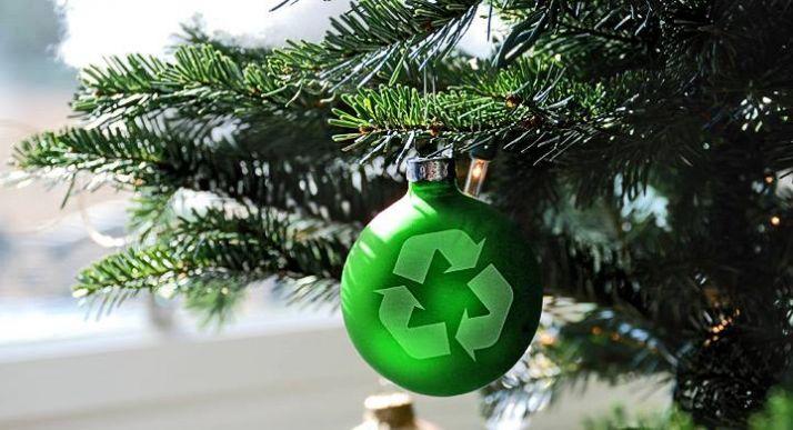 Foto 1 - El mejor día del año para presumir de espíritu ecológico