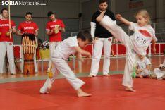 Campeonato Interprovincial de Capoeira. SN