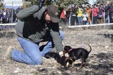 Concurso de Caza de Trufa con Perros. /EM