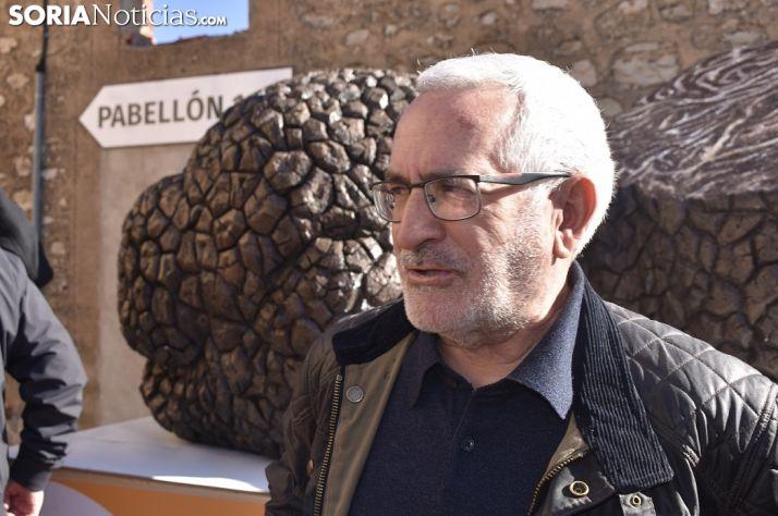 Javier Romero, alcalde en funciones de Abejar. /EM