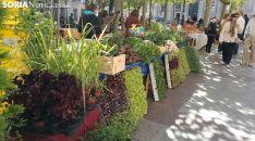 Imagen de archivo del Mercado Ecológico en la plaza de San Esteban de Soria.