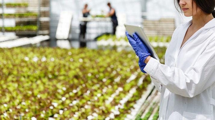 Foto 1 - La Junta destinará 120 M€ a fondo perdido para a la industria agroalimentaria, la incorporación de jóvenes y la modernización de explotaciones