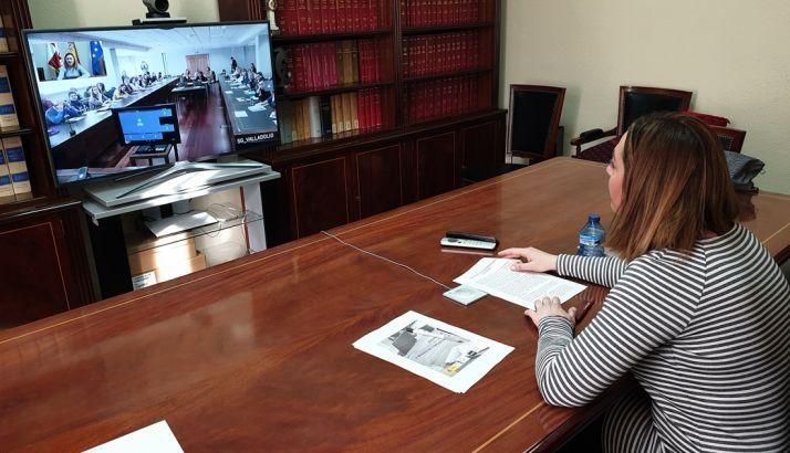 La delegada, en su internvención on line durante la jornada. /SdG