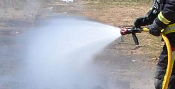 Foto 1 - Incendio forestal en Almazul