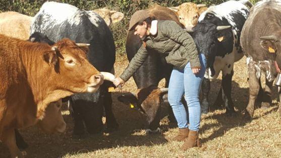 """Foto 1 - UPA reclama una """"revolución global"""" para proteger e impulsar la agricultura y ganadería familiar"""