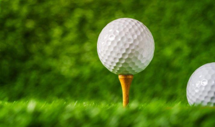 Foto 1 - Este domingo se celebra el VI Torneo de Golf Parador de Soria