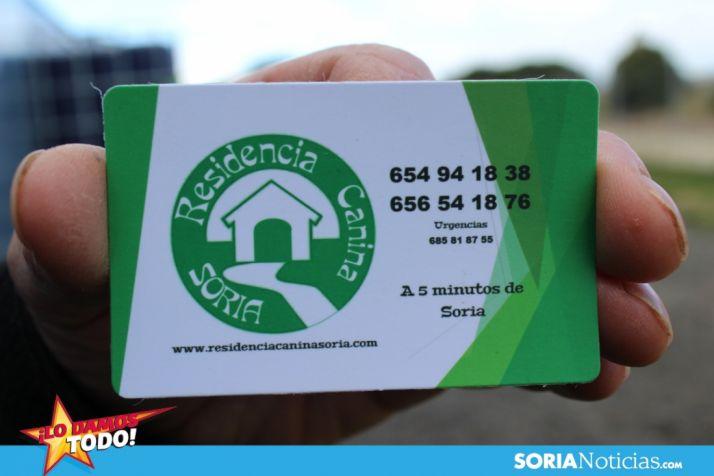 LDT: Residencia Canina Soria, entrega y recogida sin coste alguno para los jubilados