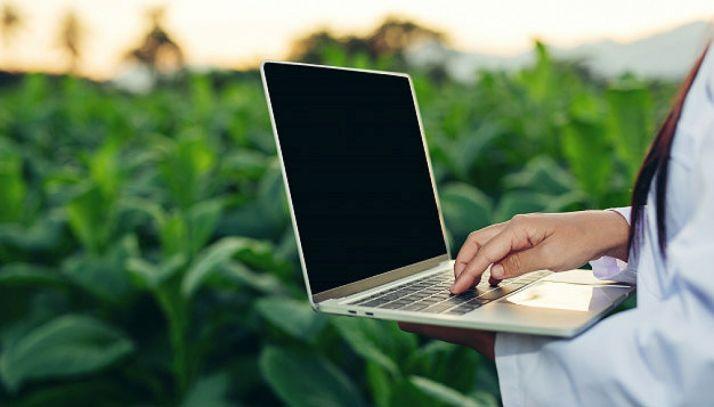 Foto 1 - El Gobierno estudia la Estrategia de digitalización del sector agroalimentario y forestal y del medio rural