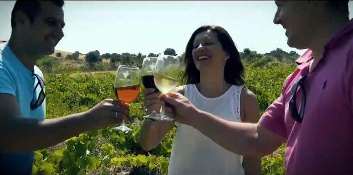 Foto 1 - La Ruta del Vino Ribera del Duero recibe 1,2 millones de visitantes en su primera década