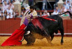 Foto 2 - Ampliación: Toros de Victorino para El Cid, Román y Rubén Pinar en la feria de San Juan