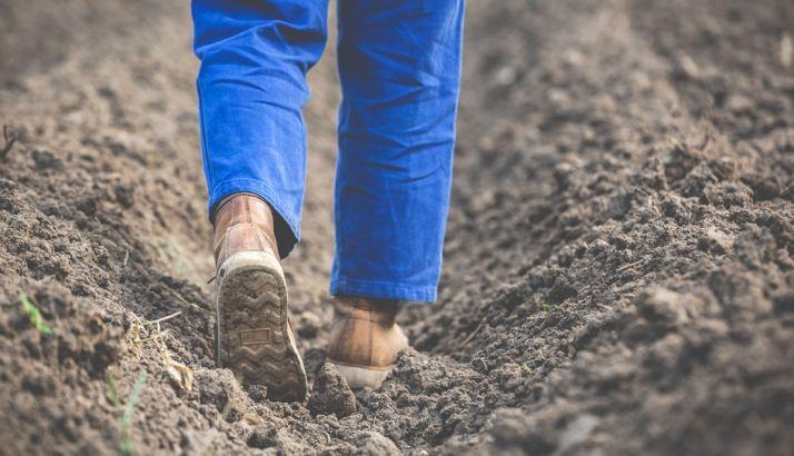 53 jóvenes agricultores sorianos se beneficiaron de ayudas regionales por 2,9M€ en 2018