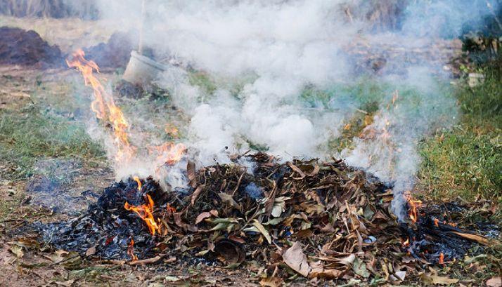 Foto 1 - Prorrogadas las quemas autorizadas de restos vegetales hasta el día 11