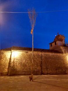 Foto 6 - ¡Arriba el mayo! Fotos y crónica: Quintanilla de Tres Barrios