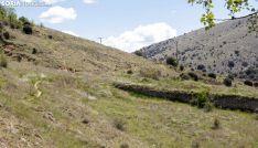 Una de las laderas del castillo, próxima al lugar del hallazgo.