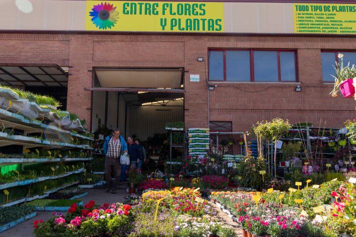 Foto 1 - Entre Flores y Plantas: producto de garantía adaptado a Soria