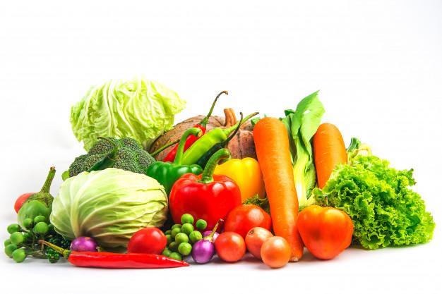 Foto 1 - La UVa recoge en un libro las 21 dolencias nutricionales más frecuentes en consulta y cómo tratarlas
