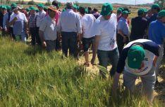 Agricultores examinan un cultivo en los campos experimentales. /ASAJA