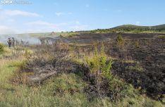 Terreno devastado por las llamas en Cueva de Ágreda. /SN