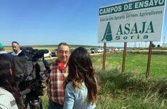 Carmelo Gómez en los campos experimentales. /ASAJA