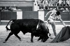 Roca Rey, referente actual del toreo nacional, en la tarde de su puerta grande en Las Ventas / Rocarey.es