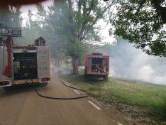 Los bomberos interviniendo en las inmediaciones del río en la capital este lunes. /Ayto
