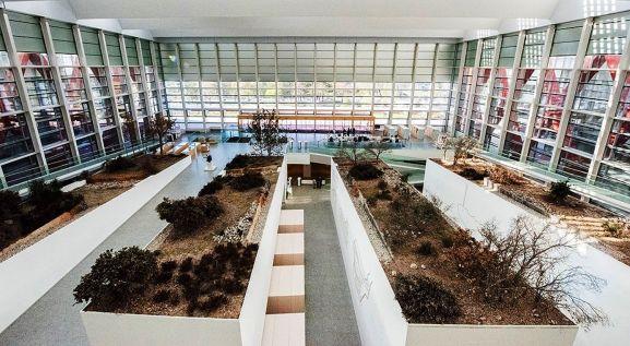 Imagen de las instalaciones. /MEH