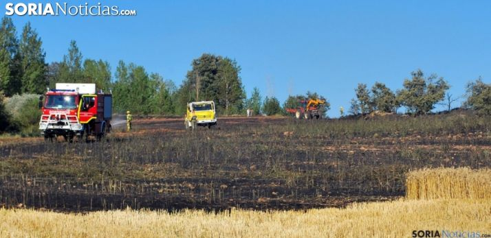 Foto 1 - Comienza el periodo de peligro alto de incendios forestales, en medio de la ola de calo