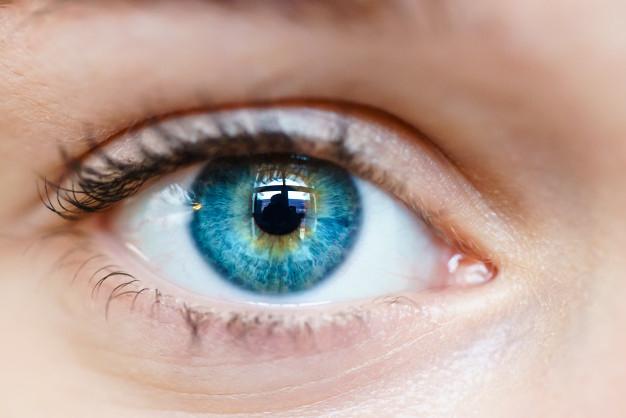 Foto 1 - Los ópticos-optometristas demandan su inclusión en la Sanidad pública