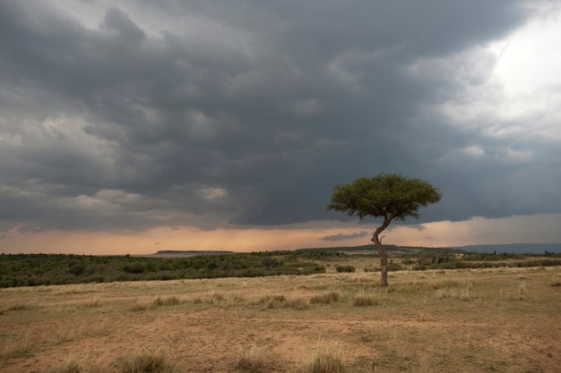 Foto 1 - La Junta alerta sobre el aumento de partículas de polvo procedente de África y recomienda la toma de precauciones