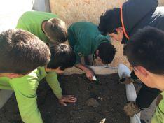 Foto 4 - VÍDEO: Los alumnos del Pico Frentes desarrollan un invernadero pasivo para huertos escolares